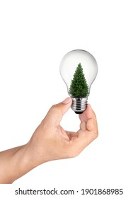 hand holding light bulb with christmas tree inside of on White Background, Inspiration concept