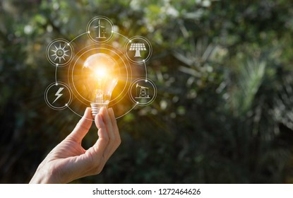 Hand holding a light bulb. Energy saving light bulb. Innovation and creative concept.