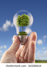 Hand holding light bulb with the green tree inside,for green energy, ecology themes