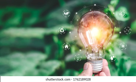 Hand holding light bulb ideas on a background of blurred green trees Ecological energy efficiency energy efficiency concept Together with the conservation of alternative energy and alternative energy.