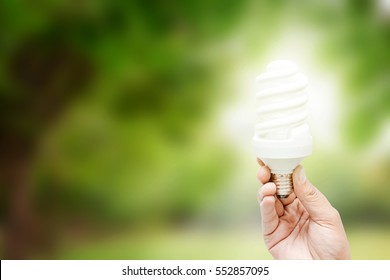Hand holding light bulb on green Natural background , green energy concept
