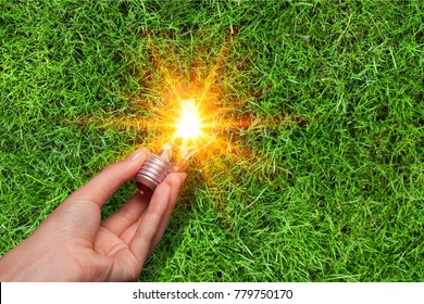 hand holding light bulb on grass background
