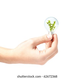 Hand holding a light bulb with small plant inside isolated on white background