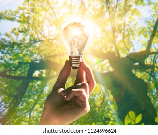 Hand holding light bulb with a sunshine inside. Environment, eco technology and solar energy concept.