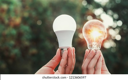 hand holding lightbulb and led light with sunset in nature background. concept energy power