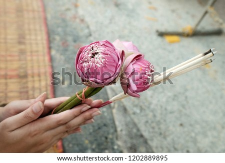 Hand Holding Lotus Flower Candle Incense Stock Photo Edit Now