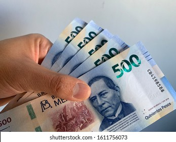 Hand holding mexican bank notes. 500 pesos.