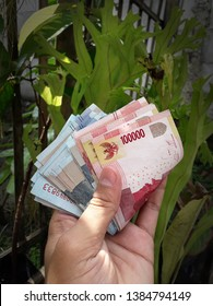a Hand holding money in Indonesian Rupiah currency with plant in background
