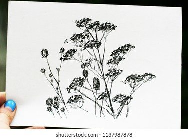 Hand holding paper with drawing mockup. Close up photo of blank sheet with herbs illustration.