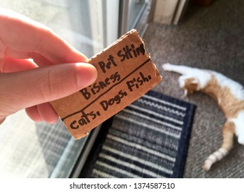 Hand Holding Pet Sitting Business Card Made by a Child with Cat in Background
