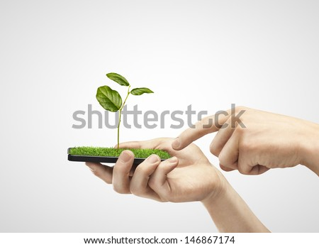 hand holding phone with grass and plant