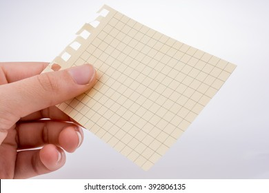 Hand holding a piece of checked paper on a white background