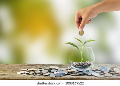 Hand holding putting coin into clear glass with tree growing in clear glass on wooden table with many coins and green nature background. Investment saving money for growing business and future concept