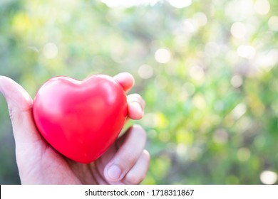 Hand holding red heart with copy space.Concept of Love and Health care,family insurance.World heart day, World health day.Valentine's day.Shape of heart on beautiful green light bokeh background.