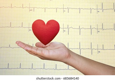 Hand holding  Red heart on Echo cardiogram graph background.