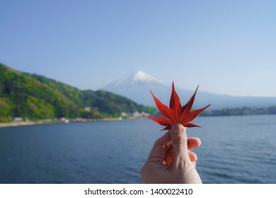 A hand holding a red leaf and a sun light with Fuji moutain background.