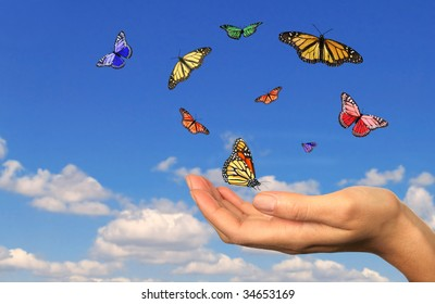 Hand Holding Released Butterflies Against a Sky Background