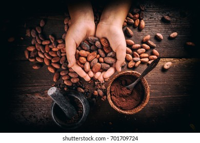 Hand holding roasted cocoa beans, top view
