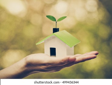 Hand holding a small green house with a young green plant growing on the roof / Ecohouse concept