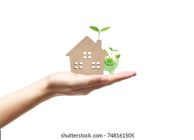 Hand holding a small house with a young green plant  and a piggy bank / Ecohouse and energy efficiency concept
