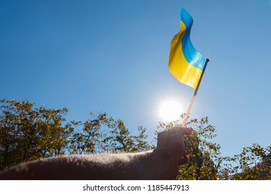 hand holding a small Ukrainian flag on the background of blue sky and sun. Hand holding Ukrainian banner
