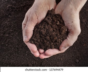 Hand holding soil surface top view