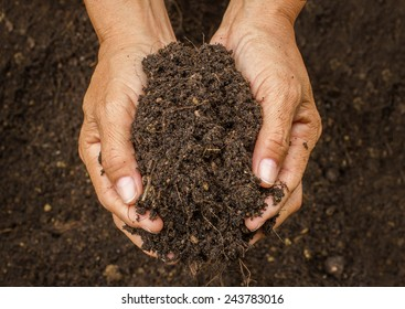 Hand holding soil,Hand dirty with soil