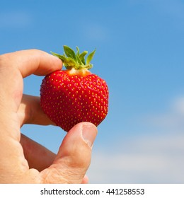 Hand holding a strawberry to the sky