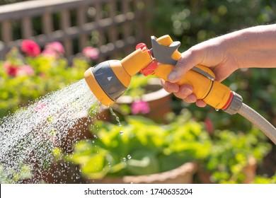 Hand holding a watering hose spray gun watering plants in a garden. UK