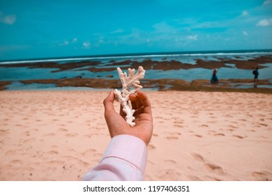 hand holding white coral beach