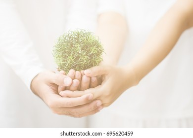 Hand holding a woman holding a green tree. By wearing white clothes. The bright green trees make a fresh start to life. with vintage
