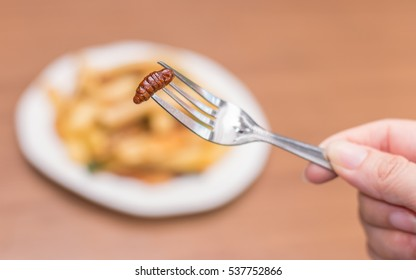 Hand holding worm insects on fork with Fried potatoes plate on wooden table background. Closeup shot, Select focus.