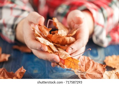 hand holding yellow maple leaves