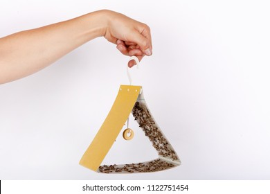 Hand holding a yellow triangle shape moth trap full of captured food moths