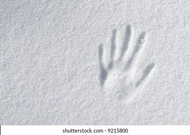 hand impression in fresh snow