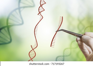 Hand is inserting sequence of DNA. Genetic engineering, GMO and Gene manipulation concept.