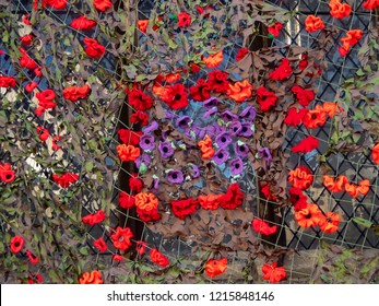 Hand knitted poppy display to commemorate the Armistice centenary on St Peters Church, Sudbury, Suffolk, UK