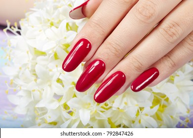 Hand with long artificial manicured nails colored with red nail polish and white flowers