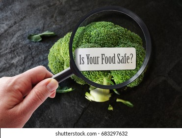 Hand with magnifying glass examining food safety label.