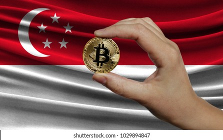 Hand of a man with a gold bitcone Cryptocurrency Digital bit of coins in a hand on a background of the flag of Singapore.