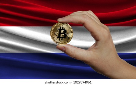 Hand of a man with a gold bitcone Cryptocurrency Digital bit of coins in a hand on a background of the flag of Netherlands.