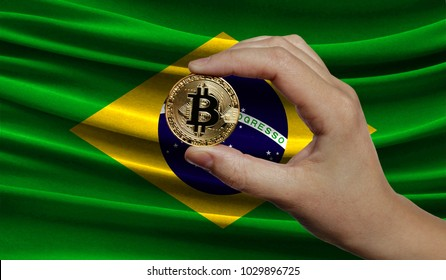 Hand of a man with a gold bitcone Cryptocurrency Digital bit of coins in a hand on a background of the flag of Brazil.