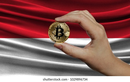 Hand of a man with a gold bitcone Cryptocurrency Digital bit of coins in a hand on a background of the flag of Indonesia.