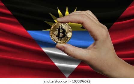Hand of a man with a gold bitcone Cryptocurrency Digital bit of coins in a hand on a background of the flag of Antigua and Barbuda.