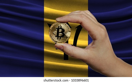 Hand of a man with a gold bitcone Cryptocurrency Digital bit of coins in a hand on a background of the flag of Barbados.