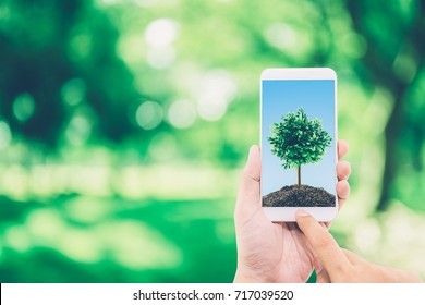Hand of man holding mobile phone with soil and tree on screen, environment concept.