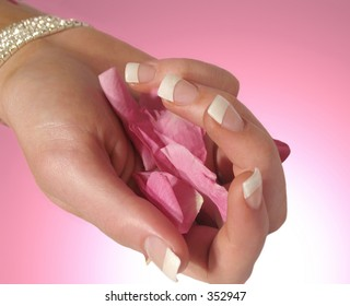 hand with manicured nails holding rose petals on pink background