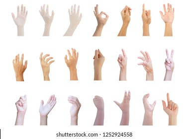 hand multiple collection with show hand up in gestures of man,woman,girl and old woman isolated on white background