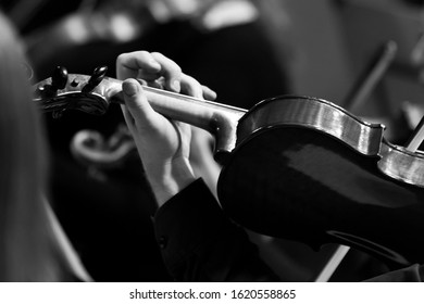 Hand of a musician playing the violin in an orchestra close-up in black and white