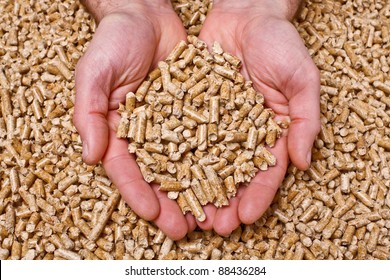 hand with natural wood pellet